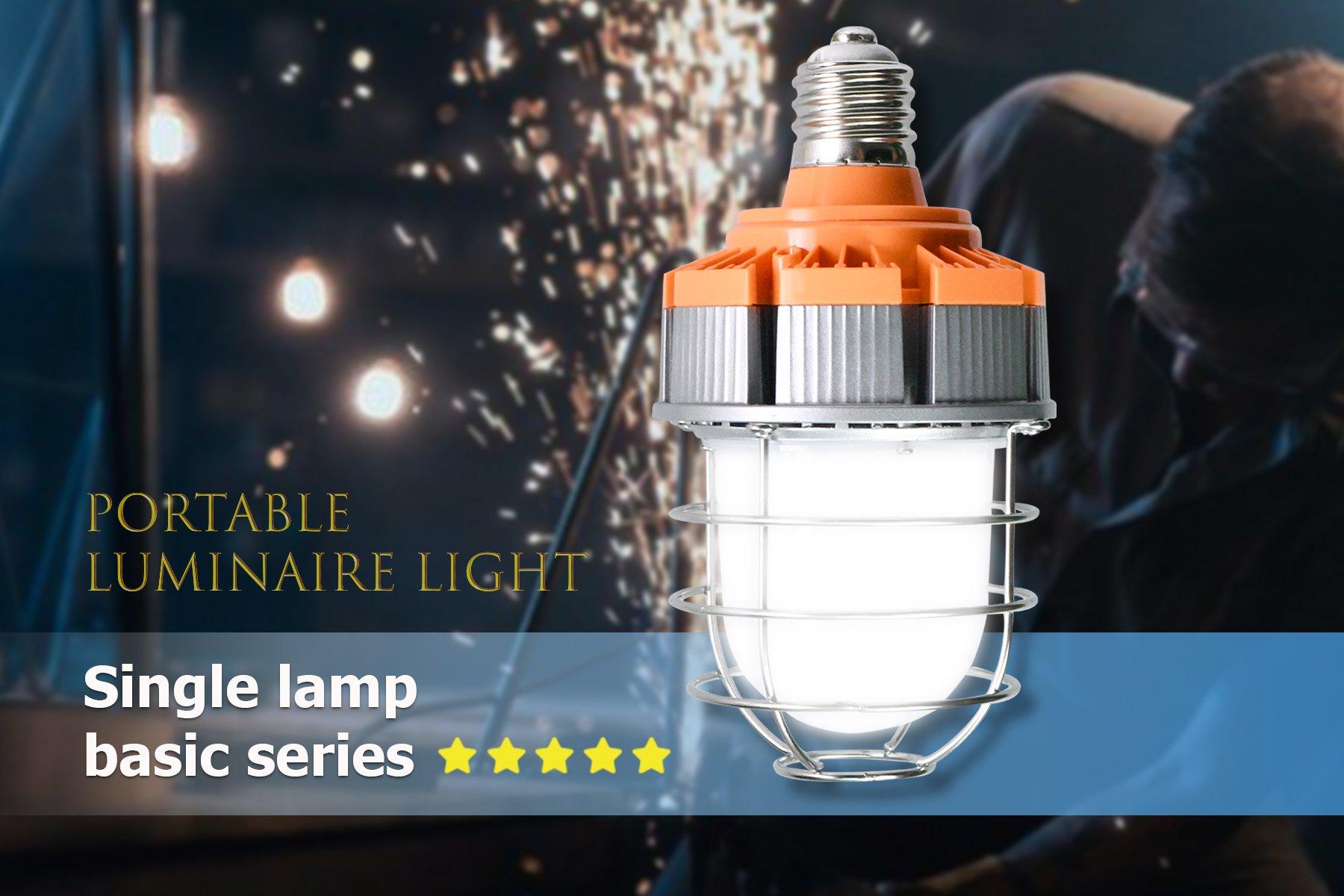 LED Portable Luminaire Light